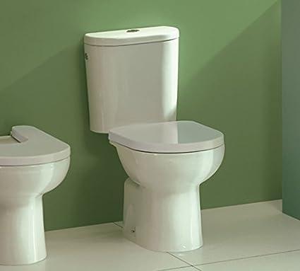 Sensational Sanitana Sytd3E10C0 Stylo Thermodur Soft Closing Toilet Seat Evergreenethics Interior Chair Design Evergreenethicsorg