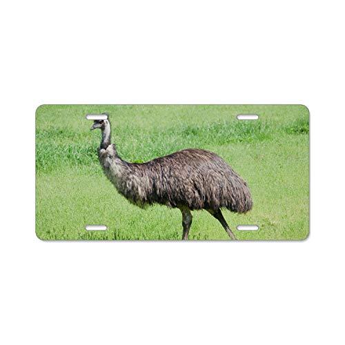 Khope License Plate Frame, Car Tag Frame, Animal Emu Birds License Plate Holder, Fashion License Plate Frame -