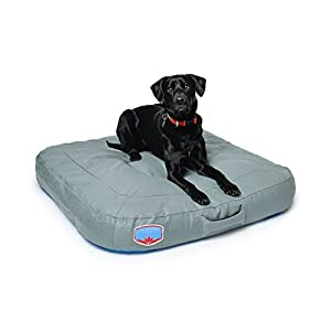 Astral AstroPad Durable and Odor-Resistant Dog Bed - Gray - Small