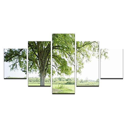 40x60 40x80 40x100cm No Frame 5 Piece Modern Canvas Painting Wall Art Picture Grassland Deciduous Forest Green Tree Spring Landscape Print Artwork Wall Decor