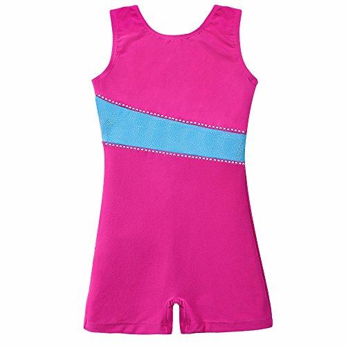 Leotards for Girls Gymnastics 3t 4t Biketards Unitards Toddlers Kids Velvet Hot Pink Blue Stripe (Pink, 3t - 4t) (Velvet Biketard)