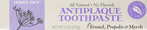 Pack of 2 Trader Joe's All Natural No Fluoride Antiplaque -