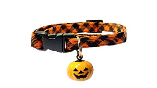 Halloween Cat and Kitten Safety Breakaway Collar With Pumpkin (Black Cat Halloween Pumpkin)