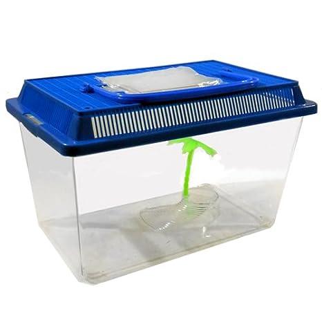 ACUARIO DE TORTUGAS PLEXIGLASS viaje portátil Peces de plástico 335 427: Amazon.es: Electrónica