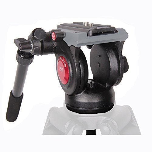 ASHANKS A-750B DSLR Camcorder Video Tripod Fluid Head with 75mm Bowl for (Crane Bowl)