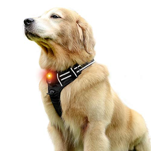 RABBITGOO Dog Safety Light up Dog Harness Dog Walking Flashlight No-Pull Pet Harness Adjustable Outdoor Pet Vest Reflective Oxford Material for Dogs Easy Control for Large Dogs (Large, LED)
