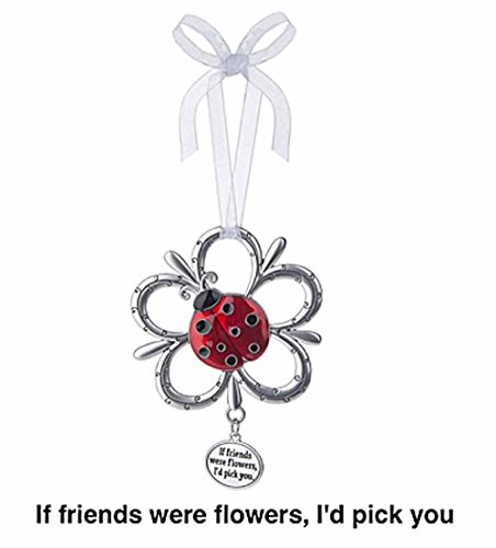 - LadyBug Ornament - If friends were flowers, I'd pick you by Ganz