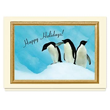 The Gallery Collection Christmas Cards.Amazon Com Holiday Penguin Trio Christmas Card 25 Premium