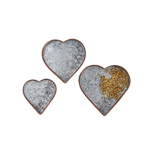Creative Co-Op DA8631 Set of 3 Heart Shaped Galvanized Metal Trays by Creative Co-op