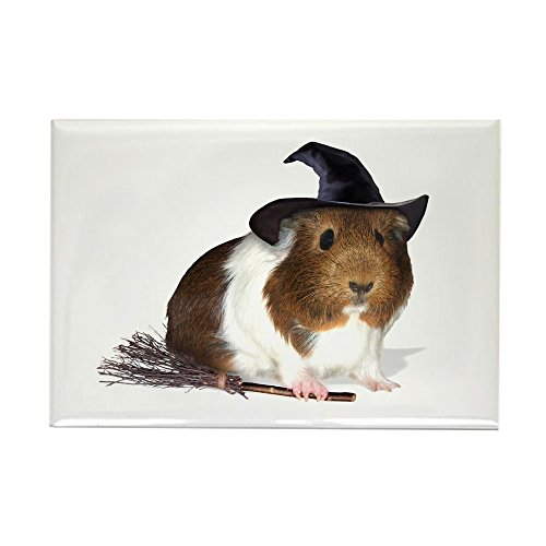 CafePress - Guinea Pig Witch Magnet - Rectangle Magnet, 2