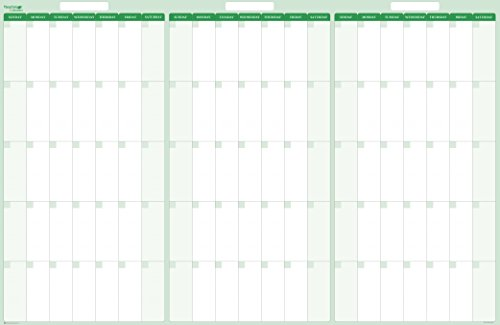 Earth Green 90-Day 3-Month Dry/Wet-Erasable Wall Calendar 38 in. x 58 in. by PlanetSafe Planners & Calendars