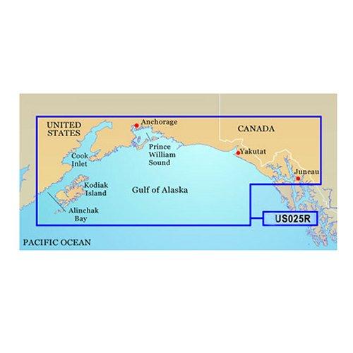 Garmin BlueChart g2 Vision Anchorage/Juneau Saltwater Map microSD (Bluechart Map)