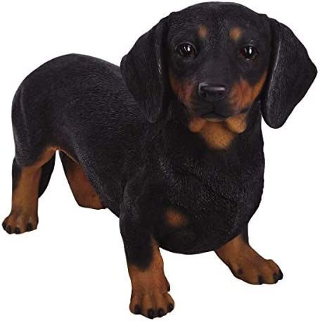 Pacific Giftware PT Large Size Statue Black and Tan Dachshund Hot Dog Short Legged Decorative Resin Figurine