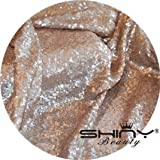 ShinyBeauty Champagne-Aisle Runner Wedding-40FTX4FT,Sequin Aisle Runner Fabric,Marriage Ceremony Carpet Indoor Outdoor (Champagne)