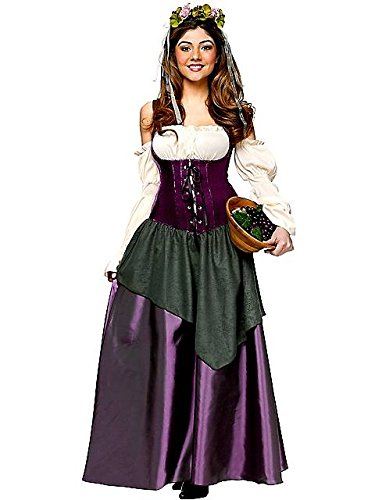 Fun World Women's Tavern Wench Costume, Multi, (Halloween Bar Maid Costume)