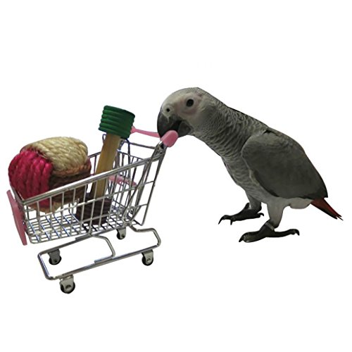 - Gaweb Mini Lovely Cart Trolley Chew Toy for Parrot Macaw African Grey Budgie Parakeet Cockatiels Conure Lovebird Cockatoo Amazon Rabbit Hamster Cage Play Toy