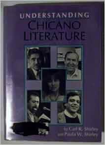Contemporary Chicano/a Literature Critical Essays