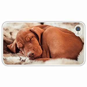 Apple iPhone 4 4S Cases Customized Gifts hungarian vizslas ennio dog White Hard PC Case by icecream design