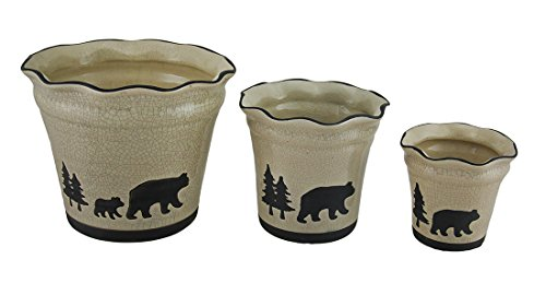 Bear Canister Set - 8