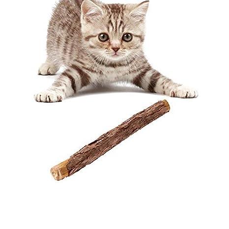 Broadroot Baquetas de Matatabi para gatos, mascotas, aperitivos, gatitos, caña de molar, fruta natural: Amazon.es: Productos para mascotas