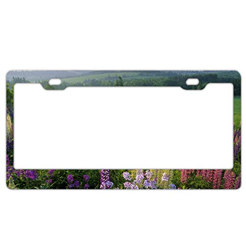 (Zogpemsy Steel Earth Flowers Prince Edward Island Canada License Plate Frame for Home/Car Decor)