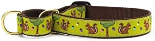 product image for Up Country Nuts Martingale Dog Collar - Medium (12.5-20 Inches) - 1 in Width