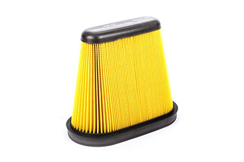 ACDelco A3191C Professional Air Filter