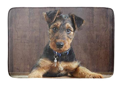 Lovestand-Doormat Welcome Mat Indoor/Outdoor Bath Floor Rug Decor Art Print with Non Slip Backing 18X30 inch Airedale Terrier Puppy Bath mat
