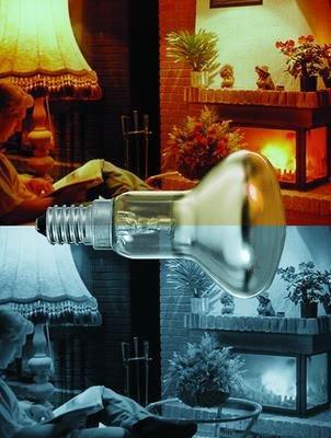 Paulmann Reflektorlampe R50 40W E14 Gold