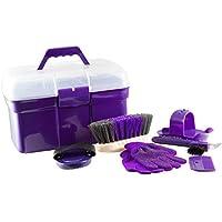 PFIFF 100576 - Caja de Limpieza con Contenido