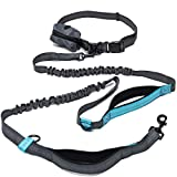 ActivPaws Premium Hands Free Dog Leash - Dual Bungee Waist Belt Adjustable Running Reflective Leash - Free Poop Bag Dispenser Pouch - Perfect Gift for Dog Owners with Medium and Large Dogs