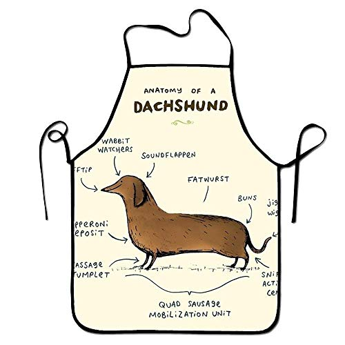 Sandayun88x Bib Aprons Dachshund Aprons Printed Apron for Restaurant Home Baking for Women Men -