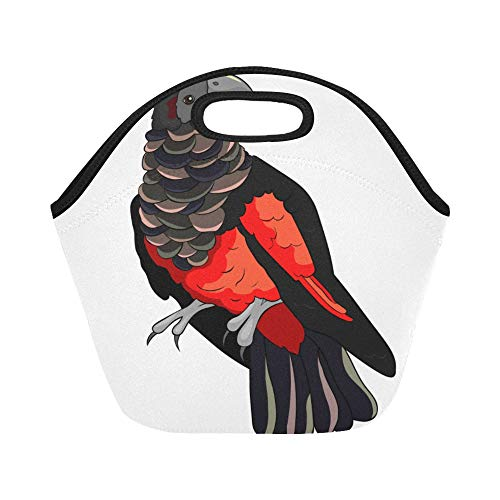- Insulated Neoprene Lunch Bag Bird Blackred Griffin Parrot Large Size Reusable Thermal Thick Lunch Tote Bags Lunch Boxes For Outdoor Work Office School