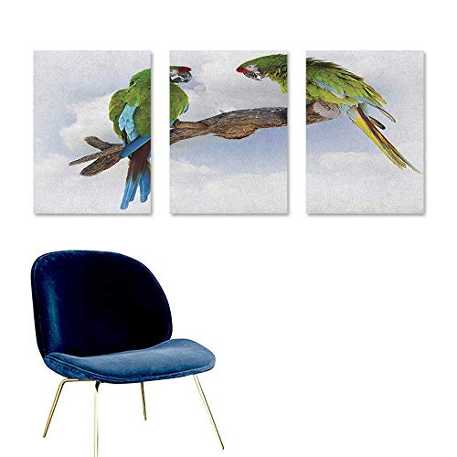 Agoza Parrot Custom Oil Painting Two Parrot Macaw on a Branch Talking Birds Clever Creatures of The Nature Easy Care Oil Painting 3 Panels 16x31inch Green White Brown