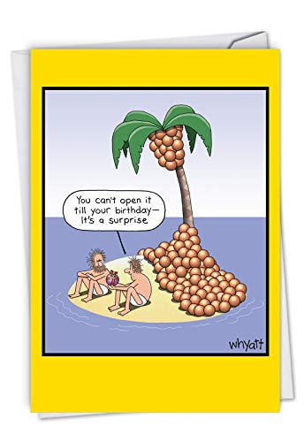 NobleWorks  Coconut Surprise  Comic Island Humor Happy Birthday Greeting Notecard with Envelope C7007BDG