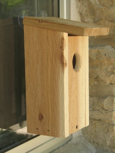 bird house window mount - 9