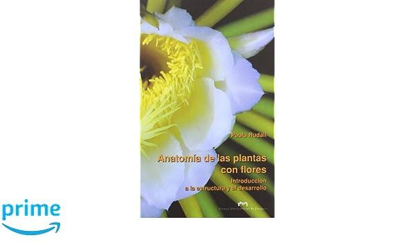 Anatomía de las plantas con flores Fuera de colección: Amazon.es ...