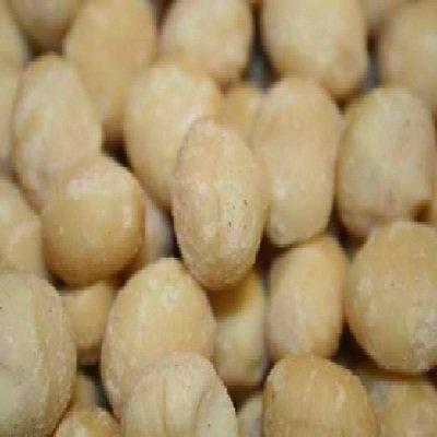 Nuts BG16619 Nuts Raw Macadamia Malawi - 1x5LB by Nuts