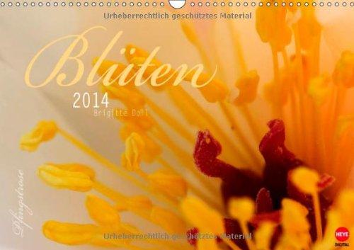 Blütenzauber (Wandkalender 2014 DIN A3 quer): Makroaufnahmen von Brigitte Doll (Monatskalender, 14 Seiten)