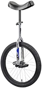 SUN BICYCLES Unicycle Classic 16 Inch Chrome/Black