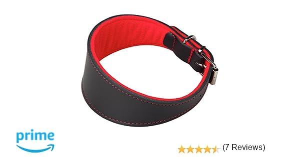 Arppe 2154014501 Collar Galgo Cuero Superfelt, Negro y Rojo ...