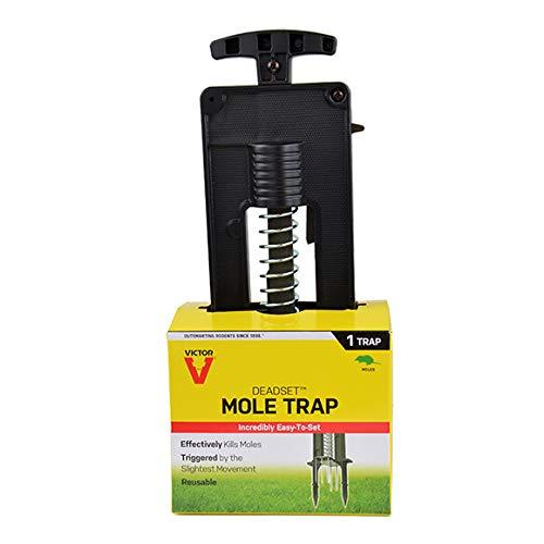 Victor Traps Deadset Mole Trap - M9015 (4) by Victor Traps