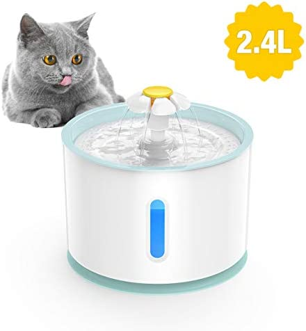 isYoung Soft blue is the best Cat Water Dispenser? Our review at cattime.com uncovers all pros and cons.
