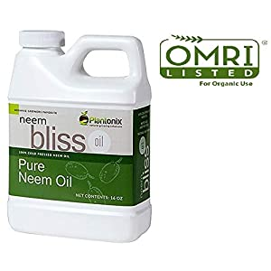 Organic Neem Bliss 100% Pure Cold Pressed Neem Seed Oil - (16 oz) High Azadirachtin Content - for Indoor and Outdoor Plant Spray - Plant Care, Pet Care, Skin Care, Hair Care, Natural Bug Repellent.