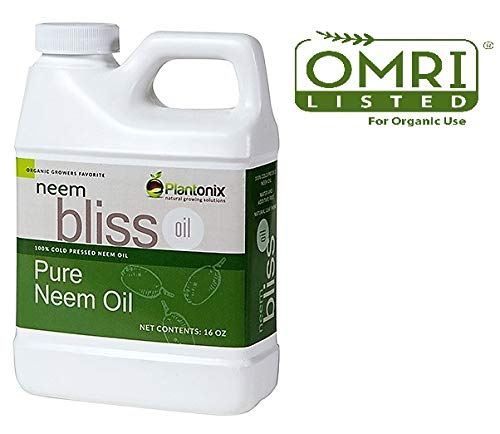 Organic Bliss Neem Oil for Aphid Control