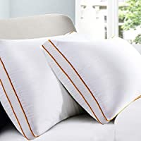 Maxzzz Pillows for Sleeping 2 Pack, Down Alternative Bed Pillow, Hypoallergenic Mesh Gusseted Pillow with Plush Fiber
