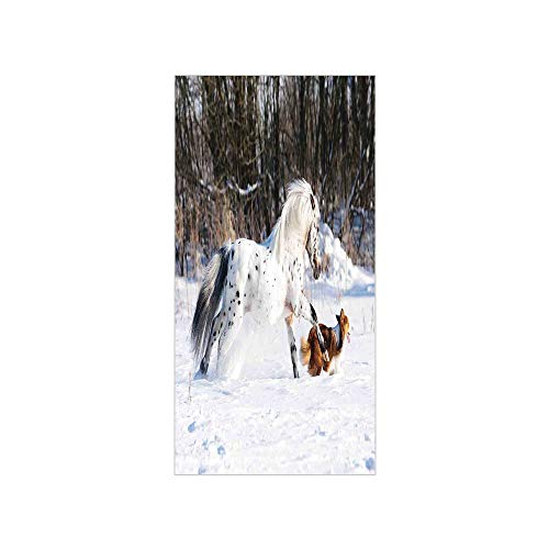 3D Decorative Film Privacy Window Film No Glue,Horses,Legendary Appaloosa Pony and Sable Border Collie Runs Gallop in Winter Photo Print,Multicolor,for Home&Office