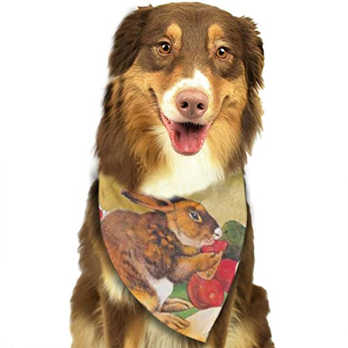 HGFR Three Lovely Rabbits are Eating Radish Customized Dog Headscarf Bright Coloured Scarfs Cute Triangle Bibs Accessories for Pet Dogs
