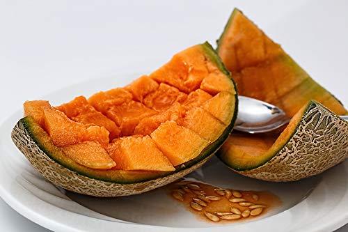 Home Comforts Canvas Print Rock Melon Sweet Melon Muskmelon Melon Cantaloupe Vivid Imagery Stretched Canvas 32 x 24