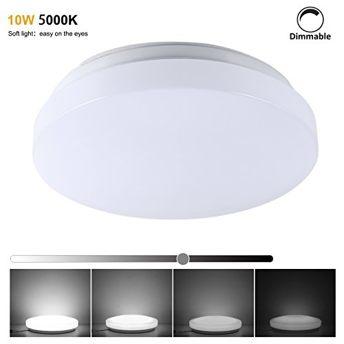 S&G® LED Ceiling Light Fixtures Dimmable 5000K 10W Equal to 100W Incandescent Light 30W CFL, 10.23 Inch Flush Mount Ceiling Lights, Budget-Firendly